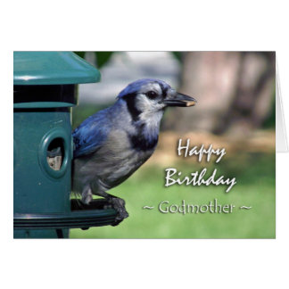 Birthday for Godmother, Blue Jay at Bird Feeder Card