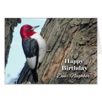 Birthday for Neighbor, Red-headed Woodpecker Card