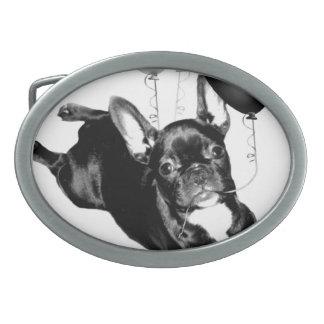 Birthday French Bulldog Belt Buckles