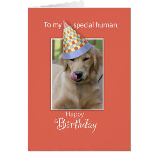 Birthday From Dog to Human, Humor, Orange, Funny H Card