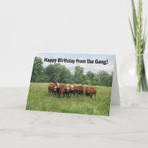 Birthday From Group Card