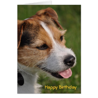 Birthday from the Dog Greeting Card