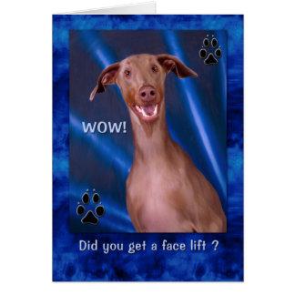 Birthday Funny Doberman Dog Painting Card