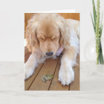 "Birthday golden retriever with frog card<br><div class=""desc"">golden retriever with green frog on wood</div>"