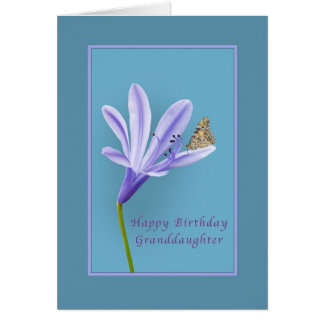 Birthday, Granddaughter, Daylily Flower, Butterfly Greeting Card
