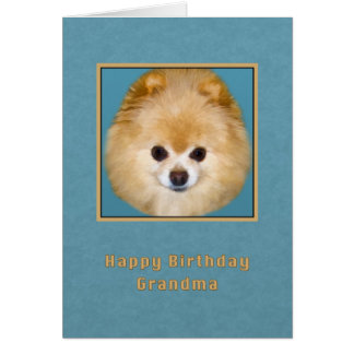 Birthday, Grandma, Brown and White Pomeranian Dog Card