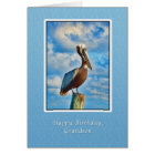 Birthday, Grandson, Brown Pelican on Post Card