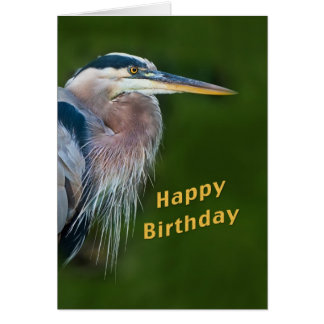 Birthday, Great Blue Heron Bird Card