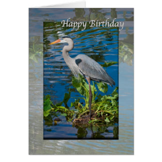 Birthday, Great Blue Heron in Lake Greeting Card