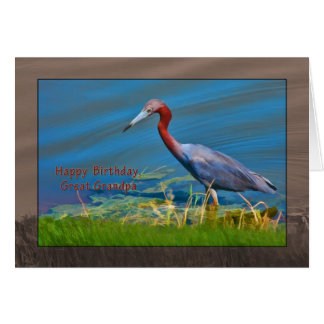 Birthday, Great Grandpa,  Little Blue Heron Bird Card