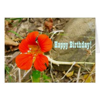 Birthday Greeting Card! Card