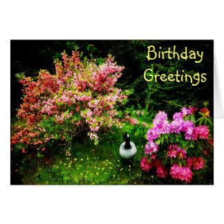 Birthday Greetings- Goose Card