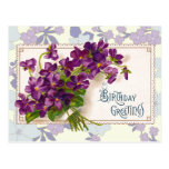 Birthday Greetings with Violets Postcard