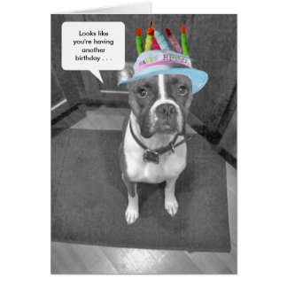 Birthday Hat Brindle Boxer Card