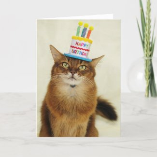 Birthday Hat Somali Cat Holiday Card