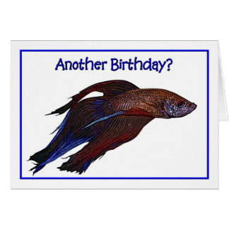 Birthday Humor Beta Fish Illustration Card