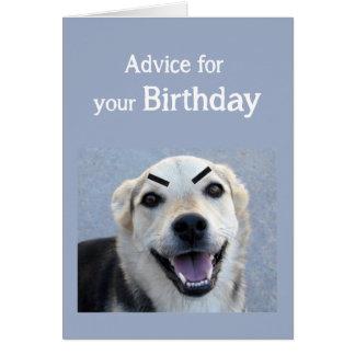 Birthday Humor Cute Dog New Trend Eyebrows Fun Card