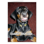 Birthday Humor - Smiling Doberman Pinscher Puppy Card