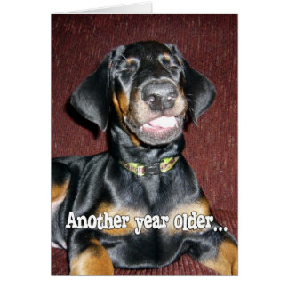 Birthday Humor - Smiling Doberman Pinscher Puppy Card