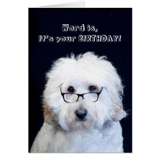 BIRTHDAY - HUMOR W/DOG/BLACK-RIM GLASSES CARD