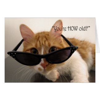 Birthday Humor - You're HOW Old? Cat Card