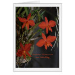 Birthday map red orchids greeting card