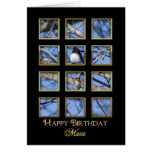 Birthday - Mother - Nature through a Window Greeting Card