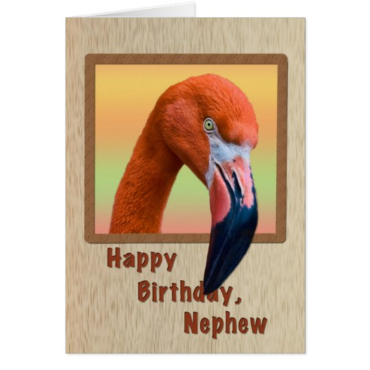Birthday, Nephew, Flamingo Bird Card