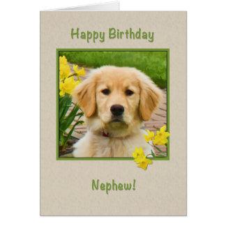 Birthday, Nephew, Golden Retriever Dog, Daffodils Card