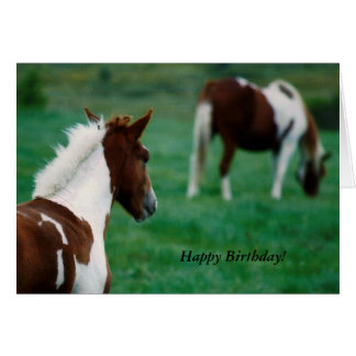 Birthday Notecard, Horses Grazing in Summertime. Card