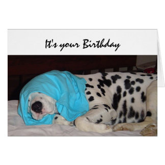 Birthday Old Age Not Happy, Humor with Dog Card