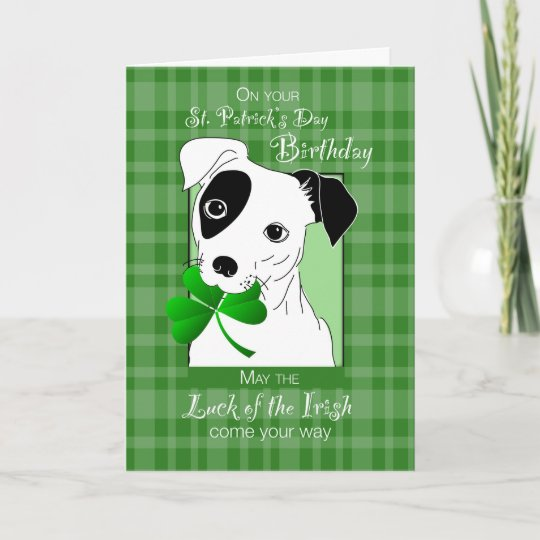 Birthday On St Patricks Day Jack Russell Terrier Card Zazzle