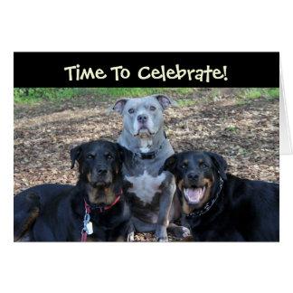 Birthday Party Animals Birthday Card