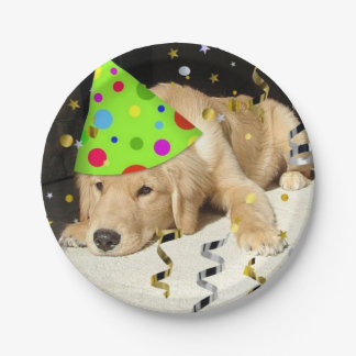 Birthday Party Golden Retriever 7 Inch Paper Plate