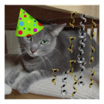 Birthday Party Gray Cat Poster