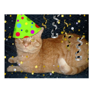 Birthday Party Orange Tabby Cat Postcard