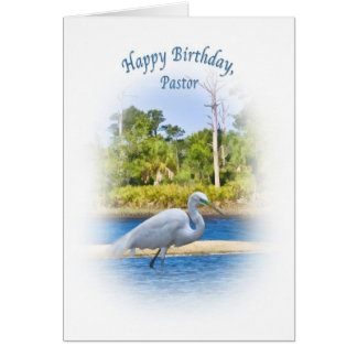 Birthday, Pastor, Great Egret Greeting Cards