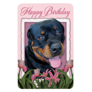 Birthday - Pink Tulips - Rottweiler - Harley Magnets
