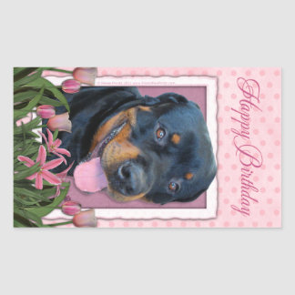 Birthday - Pink Tulips - Rottweiler - Harley Rectangular Sticker