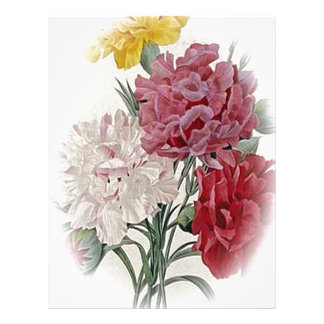 Birthday Pinks - Soft Edged Oval Letterhead