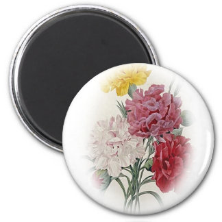 Birthday Pinks - Soft Edged Oval Magnet
