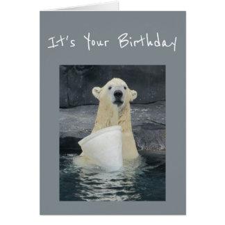 Birthday Polar Bear Bucket of Fun Humor Card