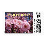 BIRTHDAY! postage stamps Pink Blossoms Floral