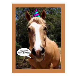 Birthday Postcard - Bess the Horse