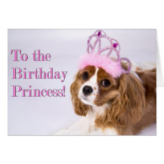 Birthday Princess Cavalier King Charles Card