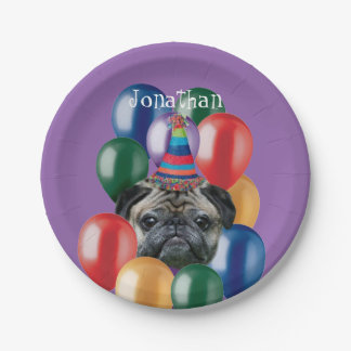 Birthday Pug dog paper plate