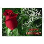 Birthday Red Rose Bud Card