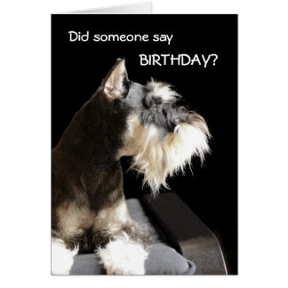 Birthday Schnauzer Card