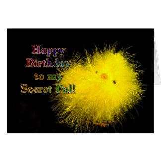 Birthday - Secret Pal - Cool Chick Card