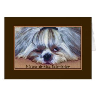 Birthday, Sister-in-law, Sleepy Shih Tzu Dog Card